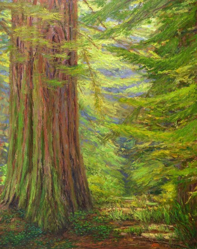 "Morning Woods 38x48"""