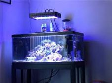 led light for aquarium