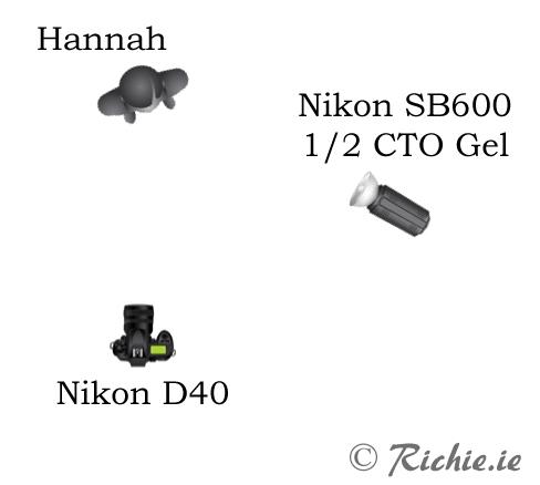diagram-hannah 1