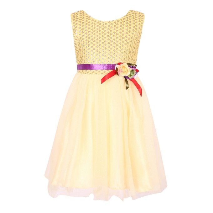 Princess Dress With Outside Layer Mesh