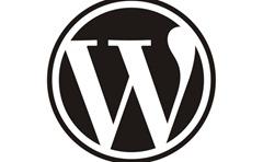 WordPress most popular website in India