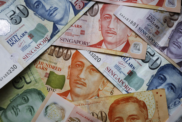 Singapore Dollar most expensive currency