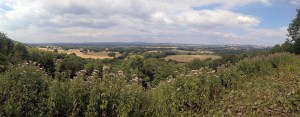Duncton Hill Panorama