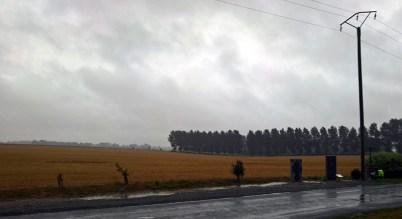 Agincourt Battle Field