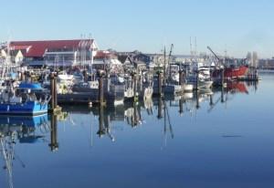 Steveston Docks by Anne's husband