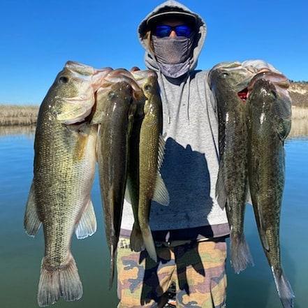 Southern California Bass Fishing Guide's Report 12/20/2020