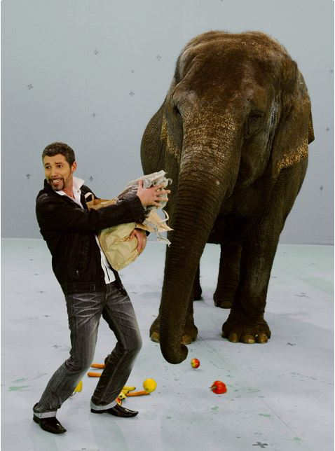 Filmforgatás elefánttal