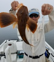 """You catch Sea Robins on little bats on the bottom, right? Not if you're Steve Durkee. 7"""" Unweighted Super Fluke caught this one."""