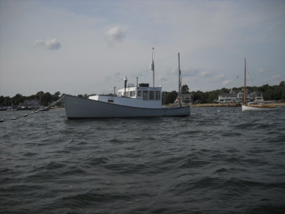 Seen in Sippican Harbor.