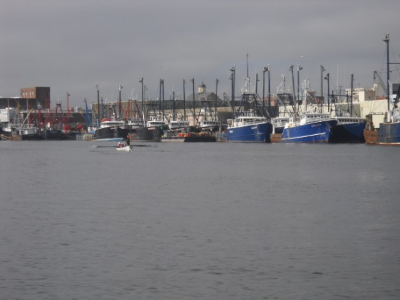 Fishing fleet. Longboat rowers.