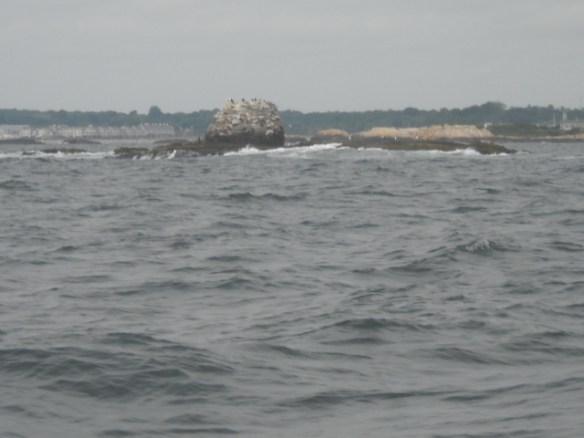 The trecherous Whale Rock guards the West Passage.