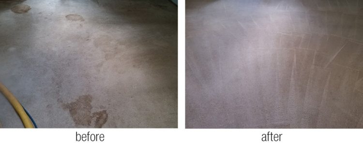 residential and commercial carpet cleaning in Tacoma