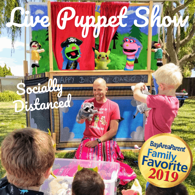Virtual Birthday Party Entertainment Ricky Roo Friends Puppet Shows
