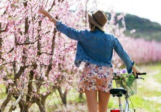 allergia ai pollini bici in primavera