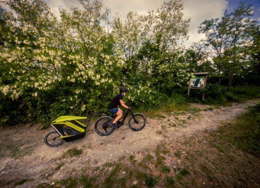 carrello bici bimbo con mamma nel bosco