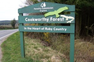 Cookworthy Forest sign