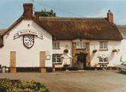 ameeth pub