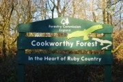 Cookworthy-Forest-81-300x200