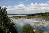 roadford nature