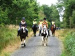 Horse riding in Cookworthy Forest