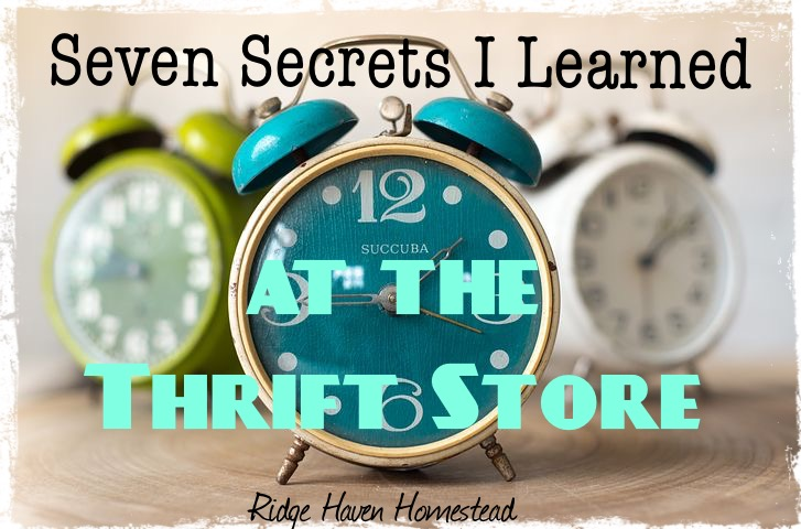Seven secrets I learned at the thrift store