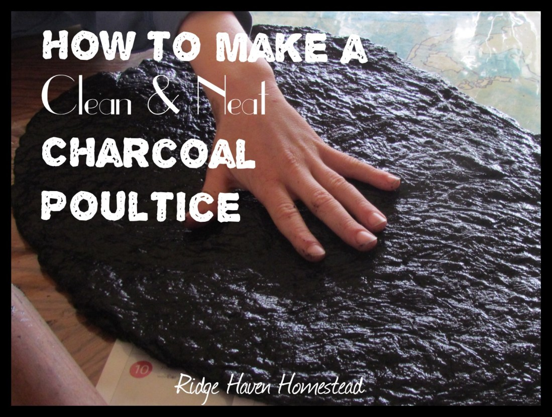 Charcoal poultice