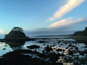 beach hiking view at Cape Alava
