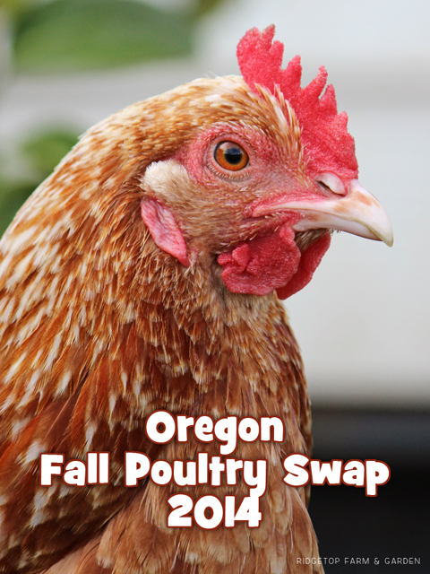 Fall Poultry Swap title sized