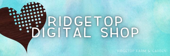 header - digital shop