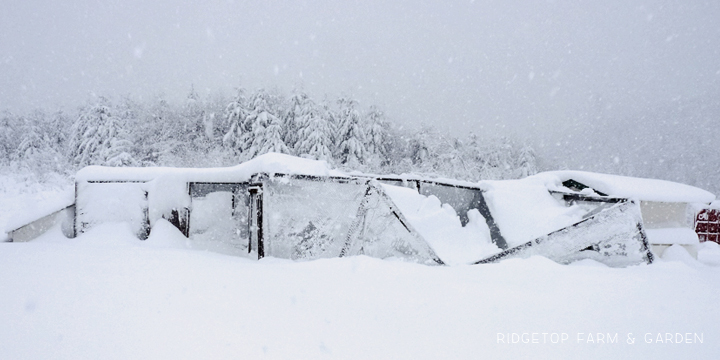 Main Coop snow