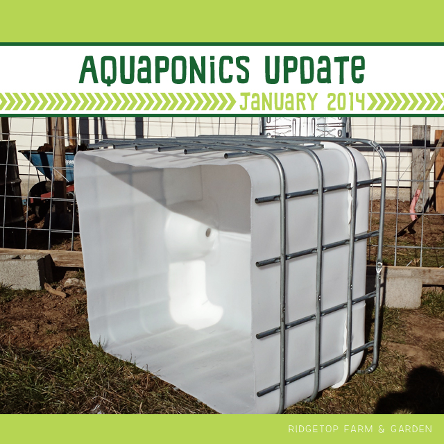 Aquaponics Update Jan2014 title