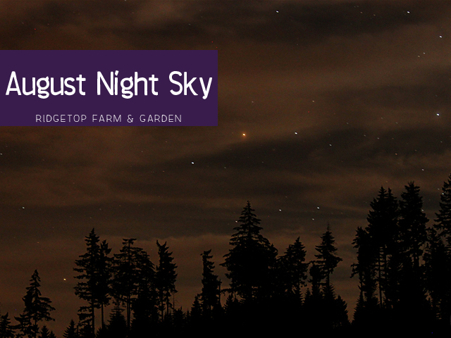 Ridgetop Farm & GArden | August Night Sky