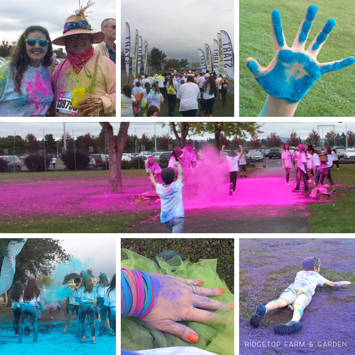 Color Vibe Oct2014 1