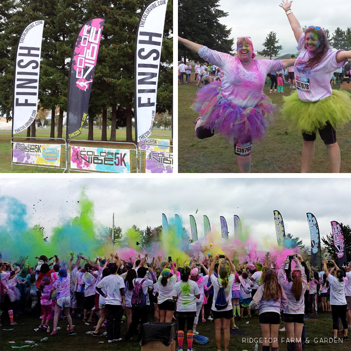 Color Vibe Oct2014 finish