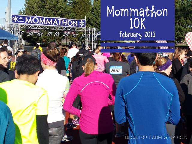 Mommathon Feb 2015 Race Recap