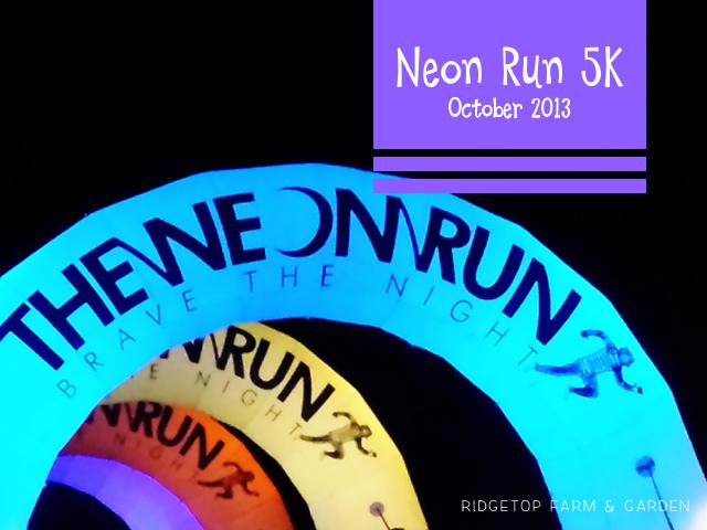 Neon Run Oct2013 title
