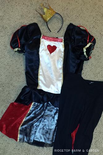 Neverland 5k May2015 costume