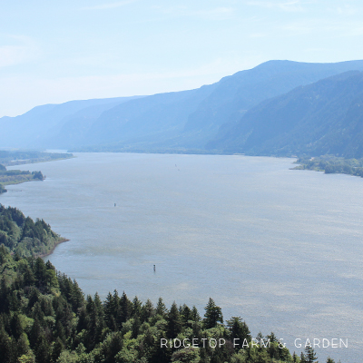 Columbia Gorge Day Trip