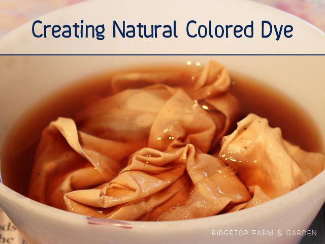 Ridgetop Farm & Garden | Creating Natural Colored Dye