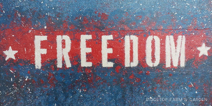 Freedom Canvas text