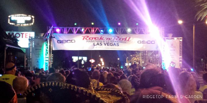 2015 Race Recap | Rock n Roll Las Vegas Half Marathon