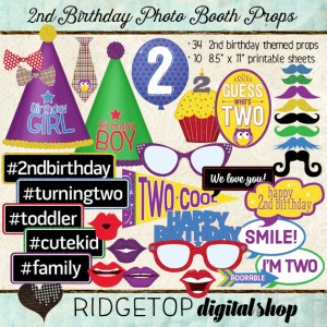 Ridgetop Digital Shop | Photo Booth Props | 2nd Birthday