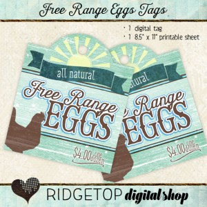 Ridgetop Digital Shop | Tags | Free Range Eggs | For Sale |$4 | Dozen