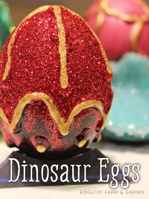 Ridgetop Farm and Garden | Dinosaur Eggs | Craft