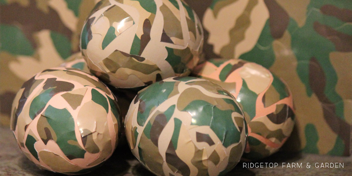 Ridgetop Farm and Garden | Trying out egg dye kits