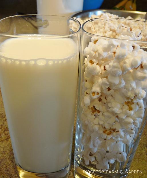 Ridgetop Farm and Garden | Popcorn in Milk Experiment | Laura Ingalls Wilder | Farmer Boy