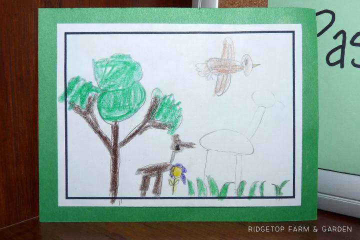 Ridgetop Farm and Garden   Biomes of the World   North America   Temperate Rainforest