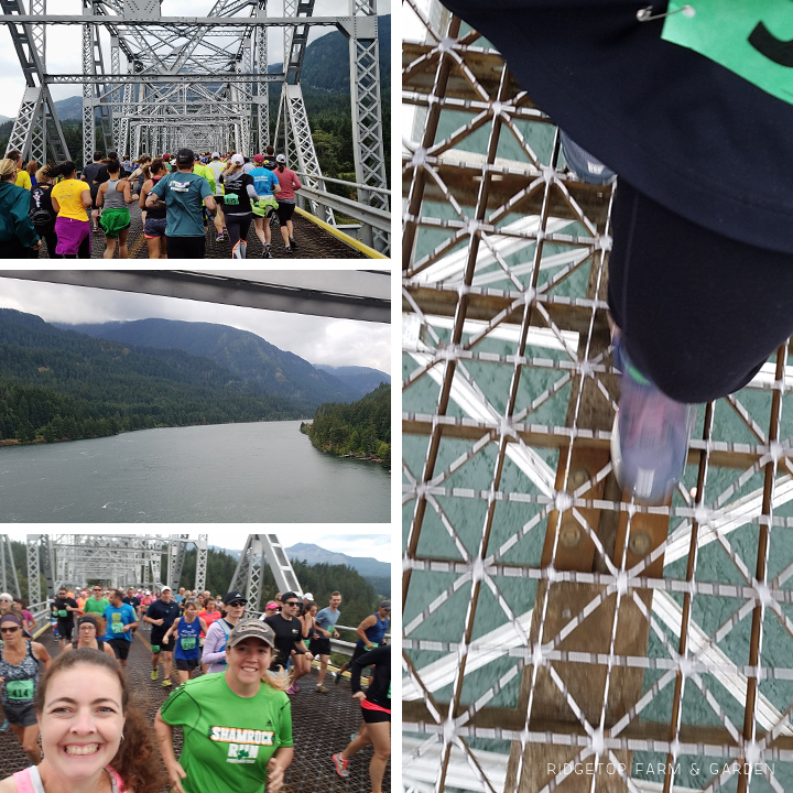 Ridgetop Runner | Bridge of the Gods 2016 | Half Marathon | Race Recap