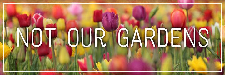 Ridgetop Farm and Garden | Flower Gardens | Not Our Gardens