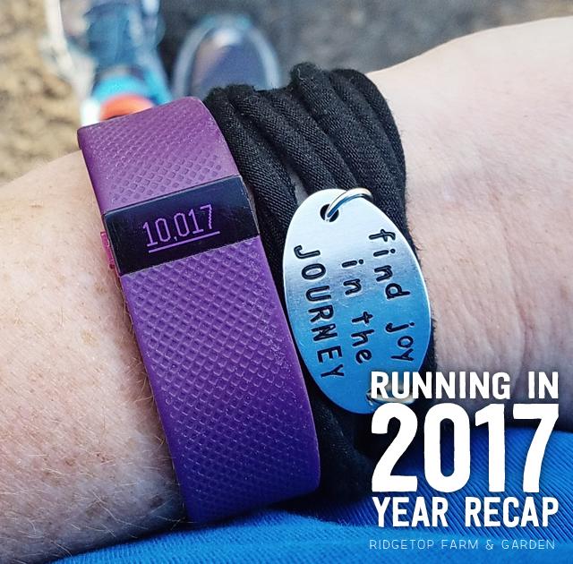 Ridgetop Runner | 2017 Yearly Recap